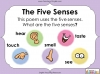 Using the Senses (KS1 Poetry Unit) Teaching Resources (slide 11/59)